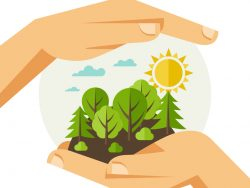 Deux mains dessinées tenant une forêt dans les mains